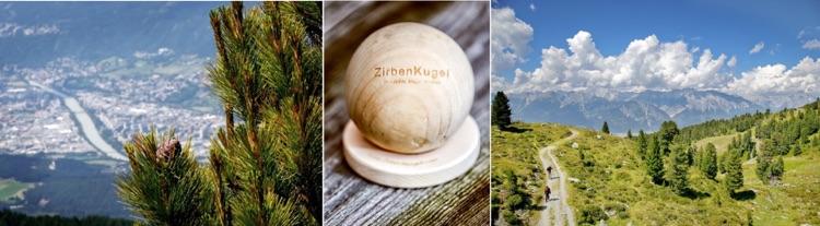 Zirben Familie  / Wohnforum Wurster / 70806 Kornwestheim